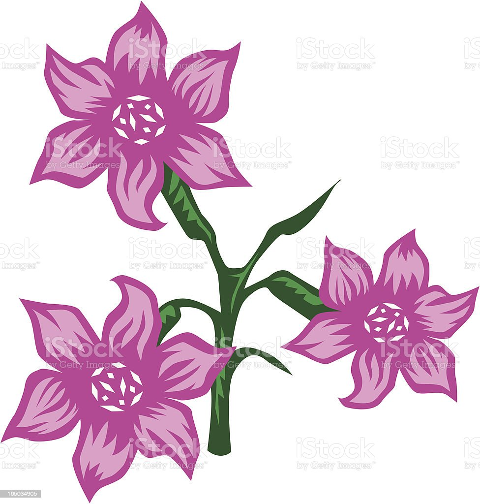 Lillies - vector royalty-free stock vector art