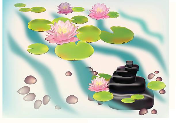 lily blooming in the garden. postkarte. - seerosenteich stock-grafiken, -clipart, -cartoons und -symbole