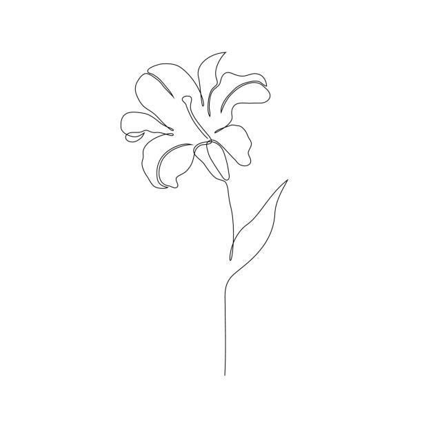 花 ゆり の