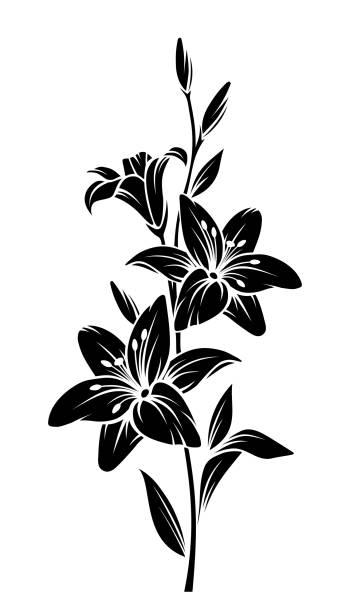 Lilienblüten. Vector schwarze Silhouette. – Vektorgrafik