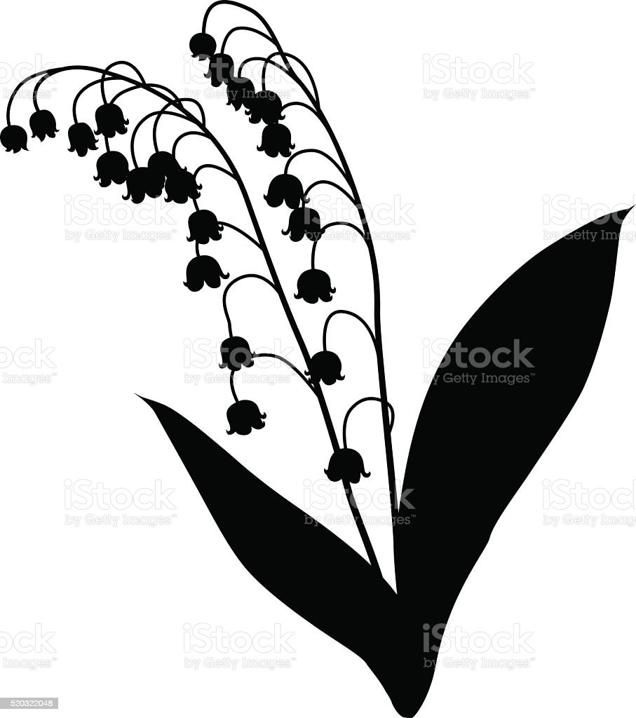 Royalty free lily of the valley clip art vector images lily of the valley silhouette vector art illustration izmirmasajfo