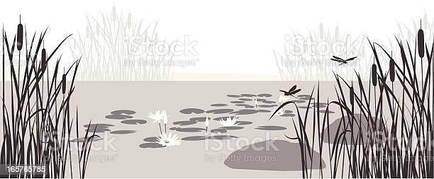 Lily pond vector silhouette vector id165765785?b=1&k=6&m=165765785&s=612x612&h=liwtfmhpeej1e7wk yvoqixrnj9vxvygja4vrjmvsf4=