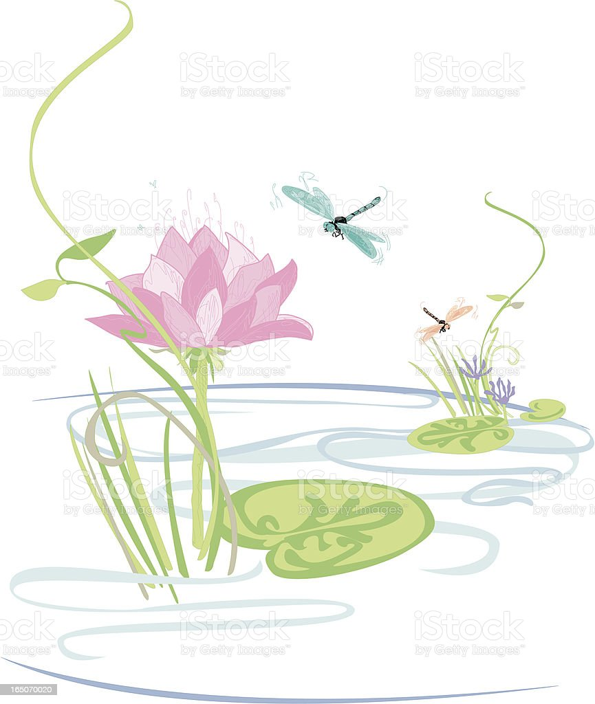 lily pond with lotus flowers reeds and dragonflies stock vector
