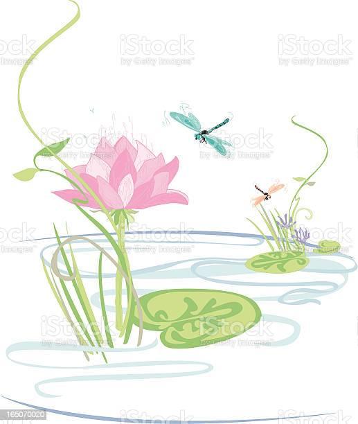 Lily pond with lotus flowers reeds and dragonflies vector id165070020?b=1&k=6&m=165070020&s=612x612&h=6btijbnuclxcbwj7u8iqmbf 763hfy13bg9xymnw yg=