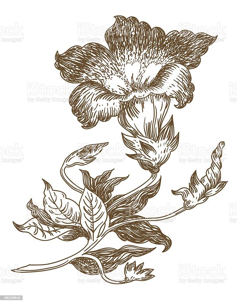 lily lily - immagini vettoriali stock e altre immagini di accarezzare royalty-free