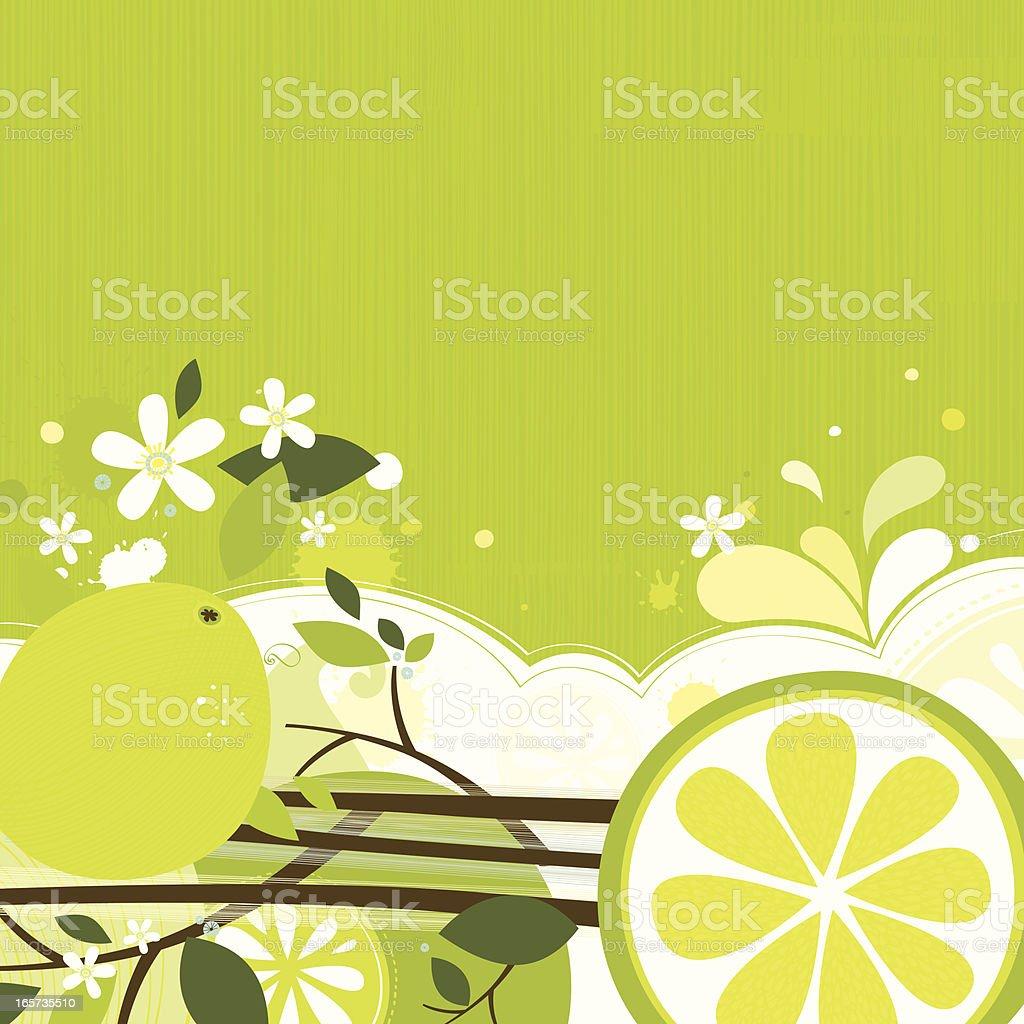 Lime backgound vector art illustration