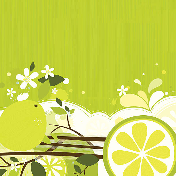 Lime backgound vector art illustration