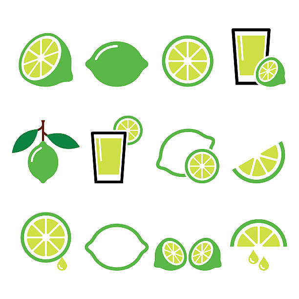 lime - food icons set Vector food icons set - lime isolated on white lime stock illustrations