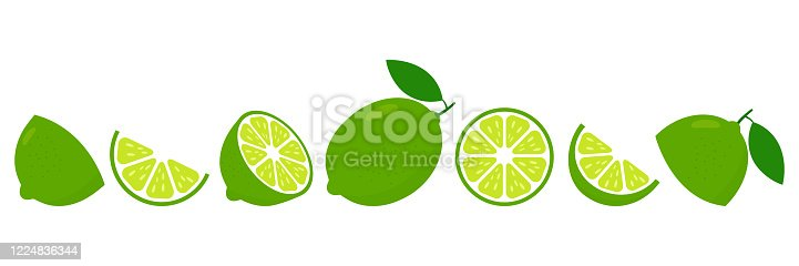 Lime fresh slices set. Cut limes fruit slice for lemonade juice or vitamin c logo. Citrus icons vector illustration isolated on white background.