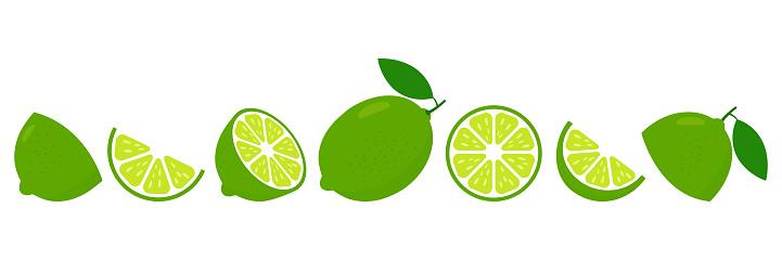 Lime fresh slices set. Cut limes fruit slice for lemonade