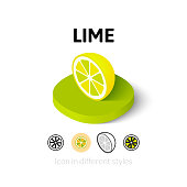 Lime icon in different style