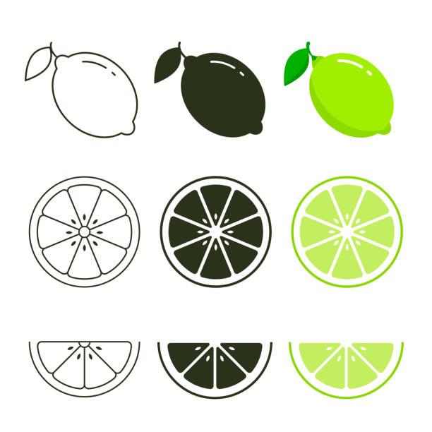 ikona limonki zestaw świeżych owoców, kolorowe, czarne i ikona linii kolekcji ilustracji wektorowej - cytryna stock illustrations