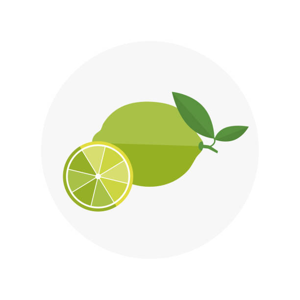 Lime. Lemon Flat Icons. Vector illustration eps 10 Lime. Lemon Flat Icons. Vector illustration eps 10 limoen stock illustrations