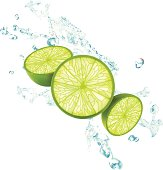 Lime Splash - Vector Illustration