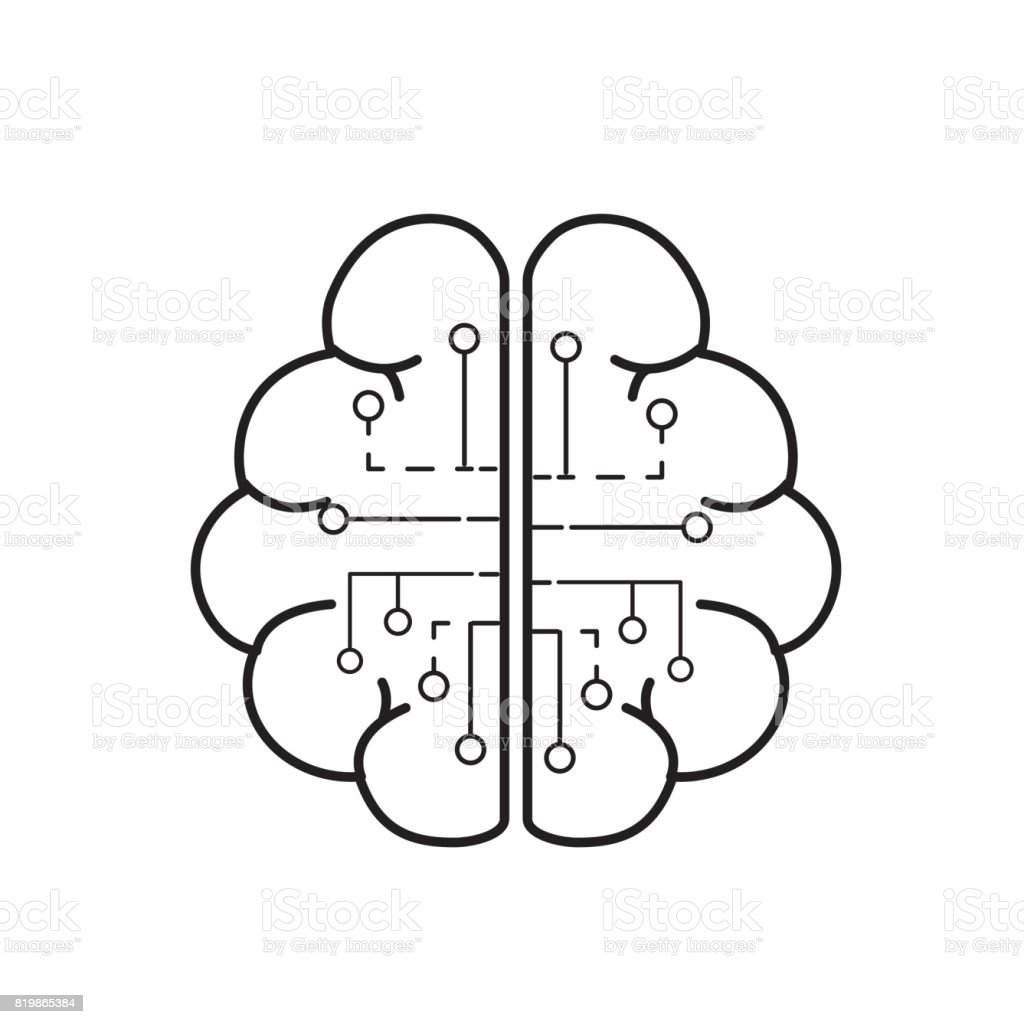 Line Anatomy Brain With Circuits Digital Connection Royalty Free