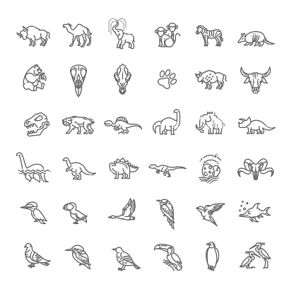 Line animals concepts, vector icons set