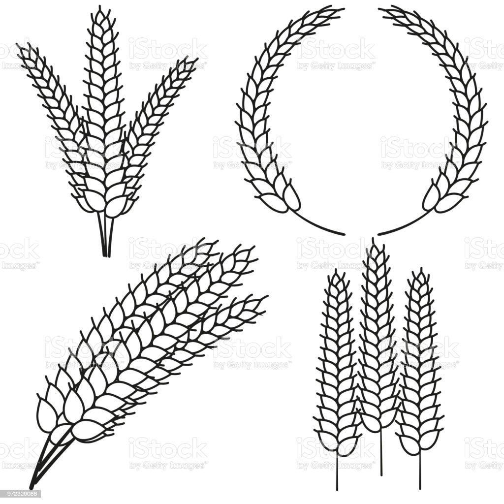 Hat Sanat Siyah Beyaz Olgun Buğday Kulak Ayarla Stok Vektör Sanatı