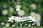 line art easter bunny label on green blurred spring meadow