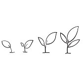 Line art growing sprout plant with hand drawn doodle style