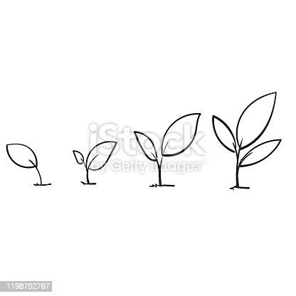 istock Line art growing sprout plant with hand drawn doodle style 1198752767