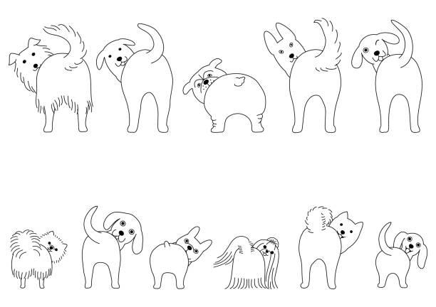 自分の尻を示す面白い犬のラインアートセット ベクターアートイラスト