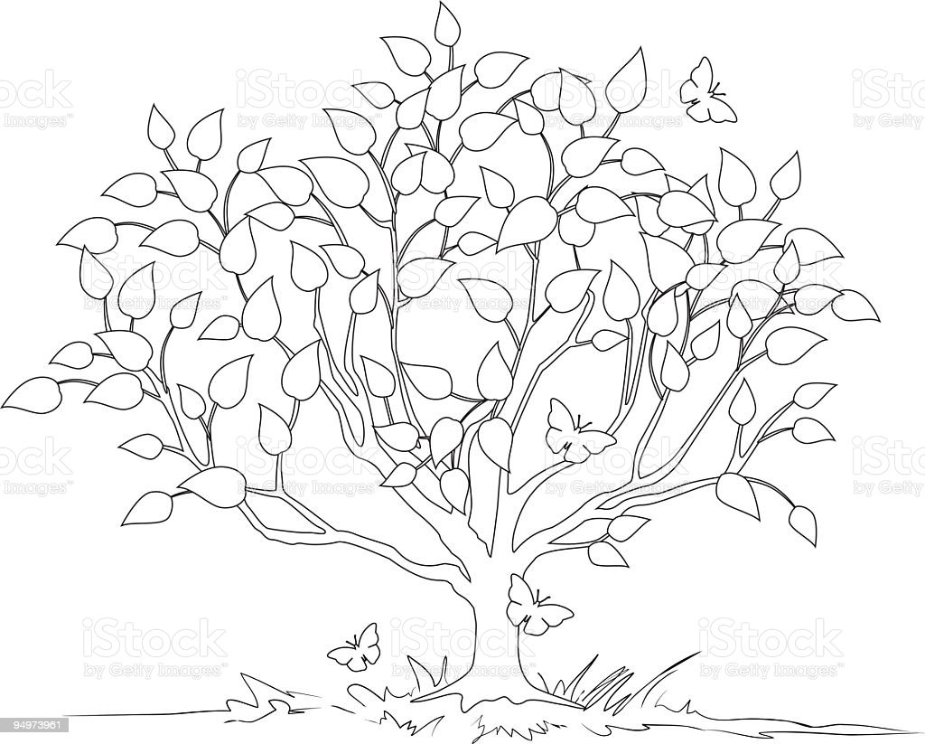 Line Art Tree : Line art tree stock vector more images of black and