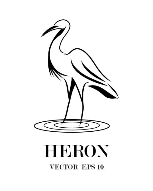 Line art vector of heron that is standing. Line art vector of heron that is standing. heron stock illustrations