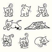 Cat in various poses.