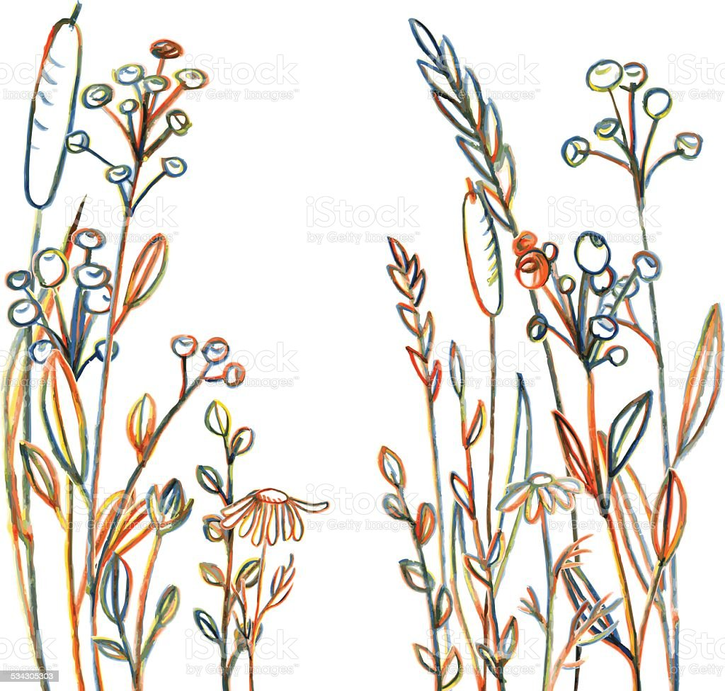 Line Art Flowers Vector : Line drawing flowers and grass stock vector art more