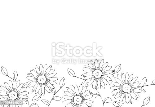 istock Line drawing of daisy flowers 1296644820