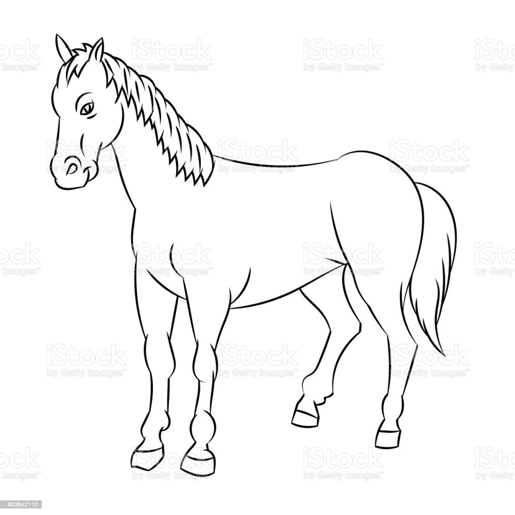 Line Drawing Of Horse Simple Line Vector Stock Illustration Download Image Now Istock