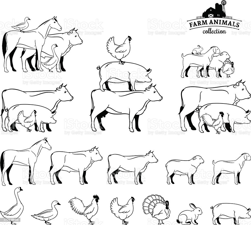 Line Art Farm Animals : Line drawings of farm animals on a white background stock