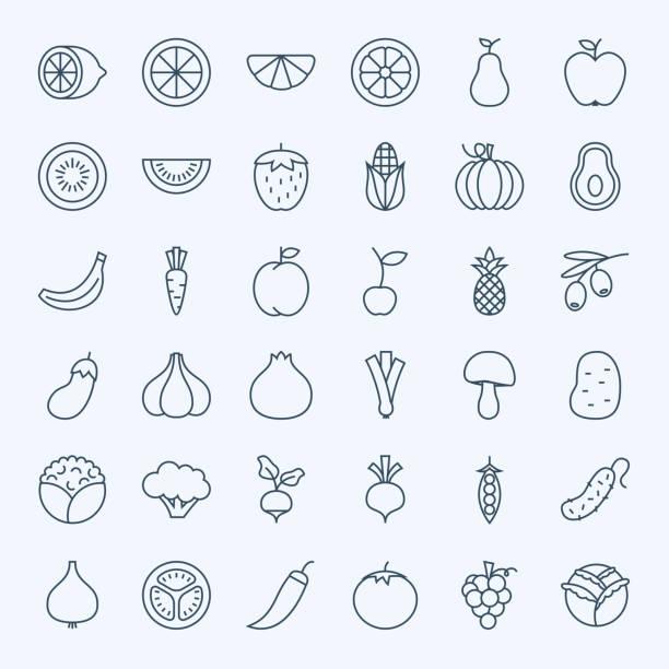 illustrations, cliparts, dessins animés et icônes de line fruit vegetable icons set - fruit