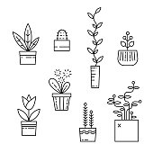 Line house plants icon set