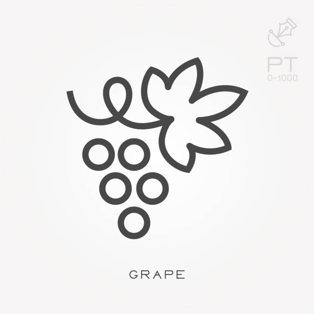Line icon grape Line icon grape bunch stock illustrations