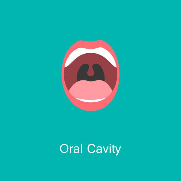 line icon mouth with teeth. - język otwór gębowy stock illustrations