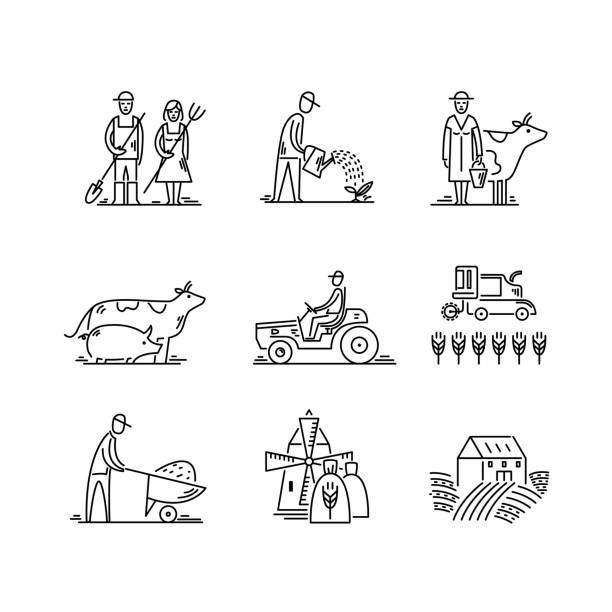 Line icons farming and agriculture Agronomy symbols, people, animals, farm field, agricultural equipment, tractor transport Line icons farming and agriculture Agronomy symbols, people, animals, farm field, agricultural equipment, tractor transport. farmer stock illustrations