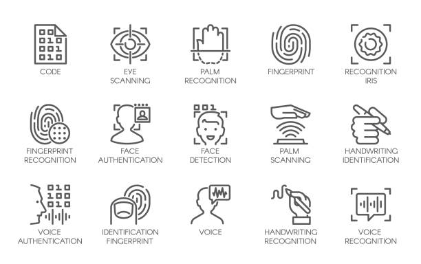 Line icons of identity biometric verification. 15 label of authentication technology in mobile phones and other devices Line icons of identity biometric verification sign. 15 web label of authentication technology in mobile phones, smartphones and other devices. Vector symbol or button isolated on white background biometrics stock illustrations