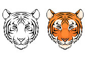 line illustration of a tiger head