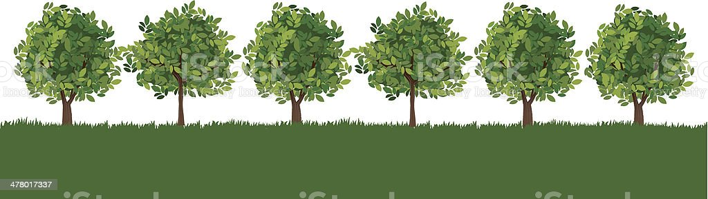 Line of trees on lush grass royalty-free stock vector art