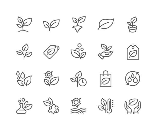 illustrazioni stock, clip art, cartoni animati e icone di tendenza di line plants icons - foglie