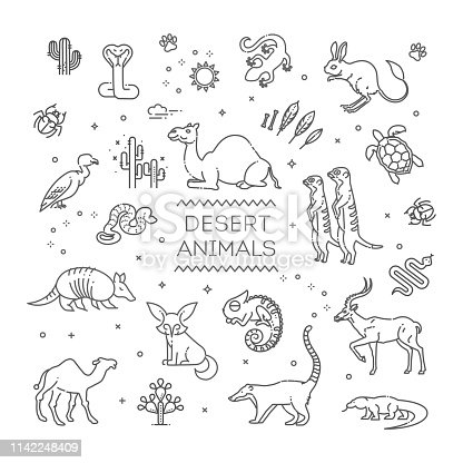 Line wildlife concept with different desert animals . Vector illustration