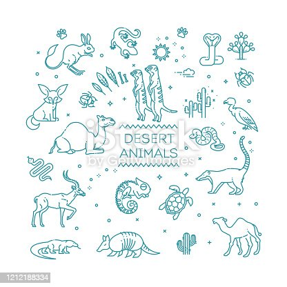 Line wildlife concept with different desert animals . Vector