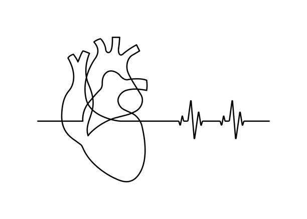 line30 Continuous line drawing of heart with heartbeat on white background. Vector illustration contour line stock illustrations