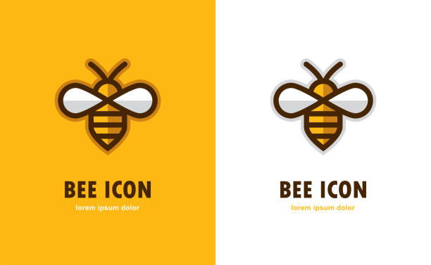 Linear bee icon. Linear bee icon on orange and white background. Honey symbol. beehive stock illustrations