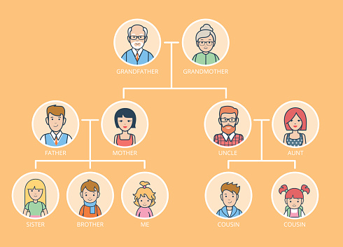 Linear Flat Family Tree Infographics Template Vector Illustration Grandparents Parents Children Connected With Lines On Yellow Background Genealogy Concept Stock Illustration - Download Image Now