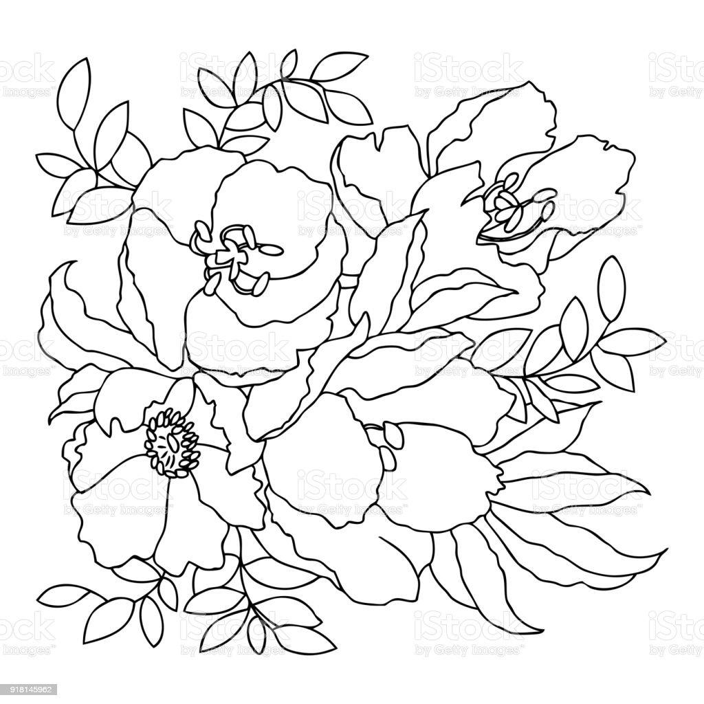 Doğrusal El çizimi Vektör Siyah Beyaz Görüntü Boyama Kitapları Için