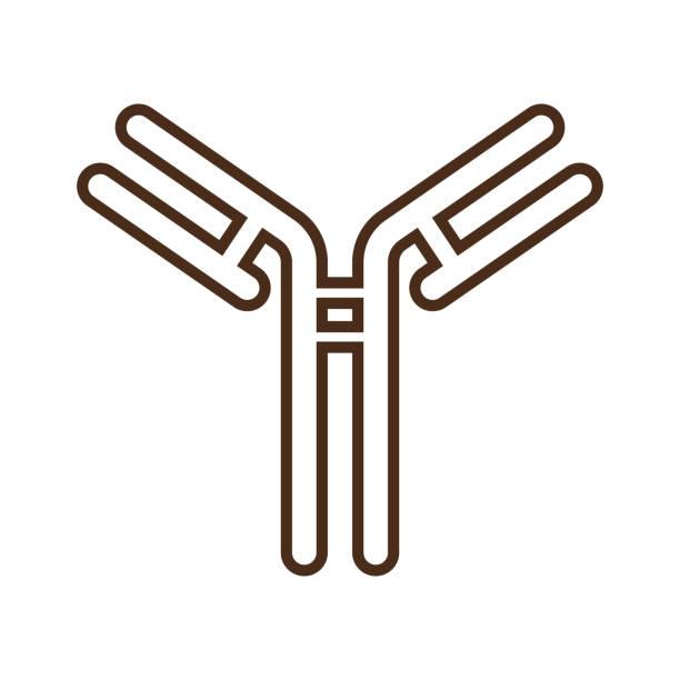 Linear icon with antibody Linear icon with antibody antibody stock illustrations