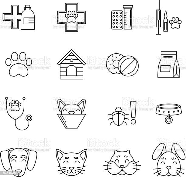 Linear icons set of veterinarian clinic different care tools for pets vector id808409856?b=1&k=6&m=808409856&s=612x612&h=binueznxtsopqcgxtoolxc1pv10cbrv g7klum5aeyw=