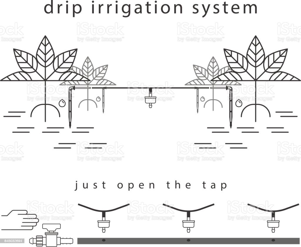 royalty free drip irrigation clip art  vector images
